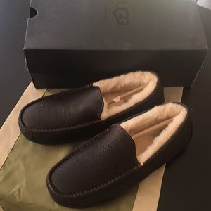 Men's Uggs leather slippered